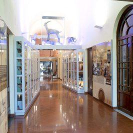 Le attività della Fondazione Scienza e Tecnica e del Planetario di Firenze
