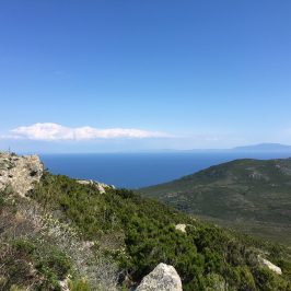 Capraia Island: walking through the silence of nature