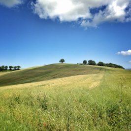 Panorama di Manciano, toscana