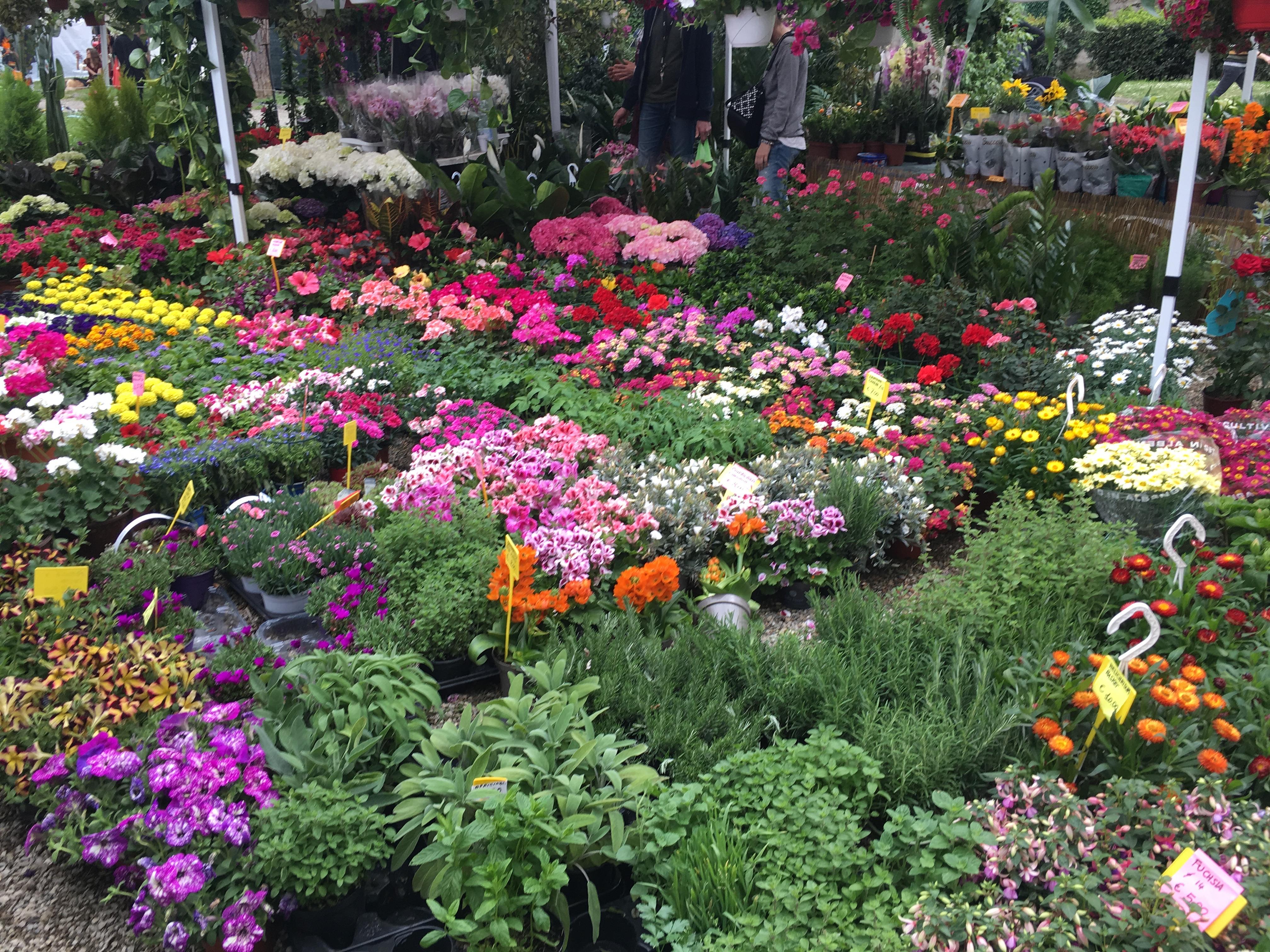 Giardino dell'Orticultura, firenze